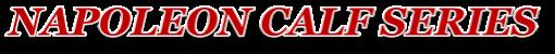 ココマイスターナポレオンカーフ